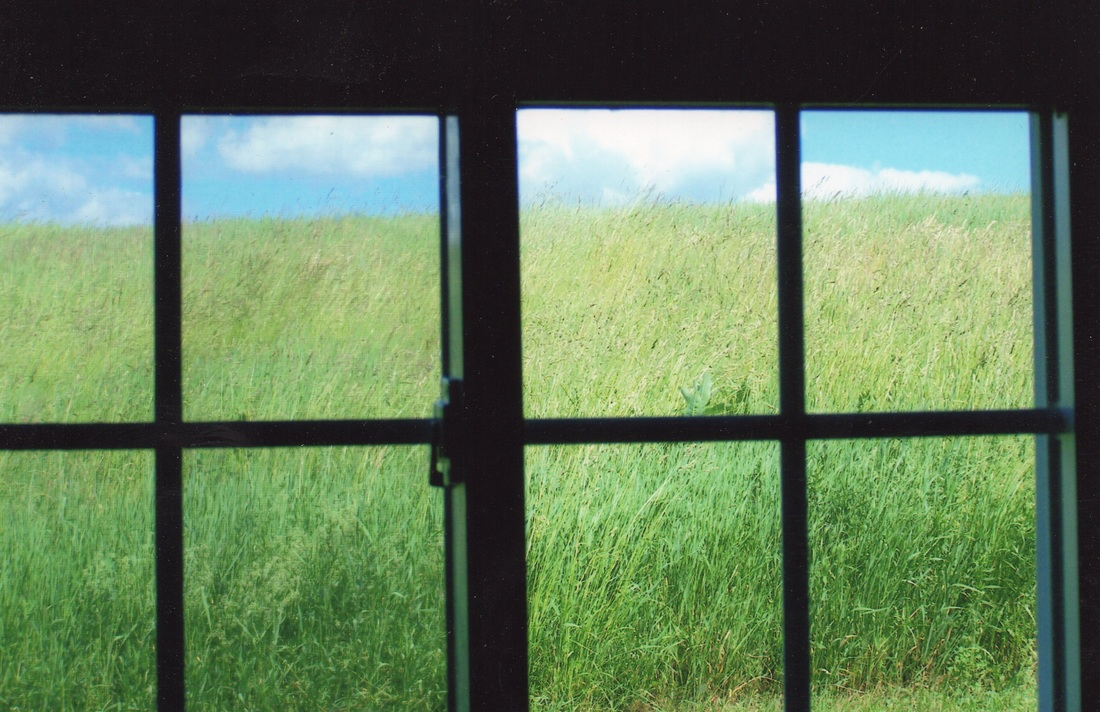 Hayfield in the window. Story Prompt.